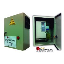 Generador de 3ra fase 12HP